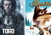 togo-live action balto-disney