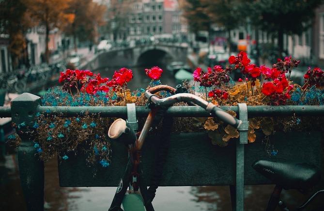 cosa-vedere-ad-amsterdam